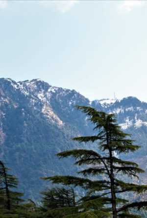 cover pi. snow of Dhanaulti
